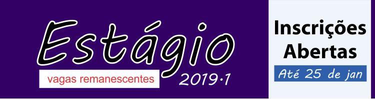 Estagio Remanescente 2019/1