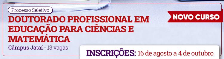Doutorado Profissional em Educação